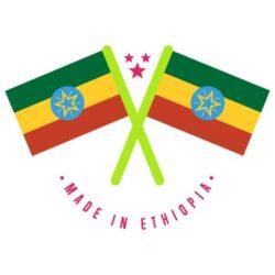 Ethiopian Linguistic Diversity